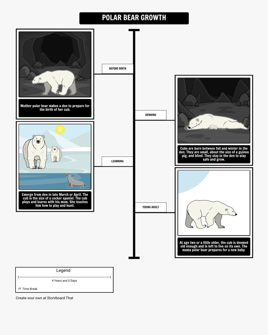"""Where Do Polar Bears Live Polar Bear Growth""""  Style=""""max, Transparent Clipart"""