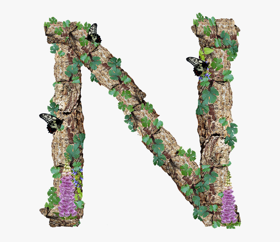 Alphabet, Letter, N, Rustic, Timber, Bark - Free Photo Rustic Bark Letter Alphabet A Timber M, Transparent Clipart