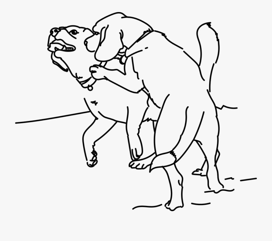 Playing Beagle Dog Pet Friend Puppy Animal - Vektor Hitam Putih Gambar Fuck, Transparent Clipart