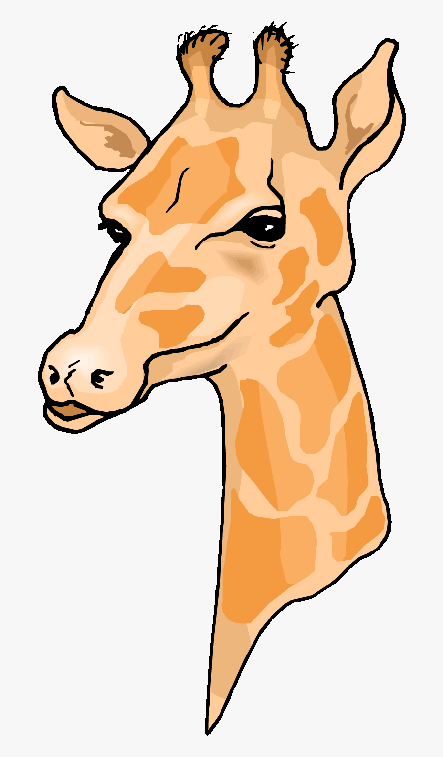 Giraffe 0 Images About Clip Art Zoo Jungle Animals - Clip Art Giraffe Head, Transparent Clipart
