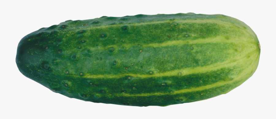 Cucumber With No Background, Transparent Clipart