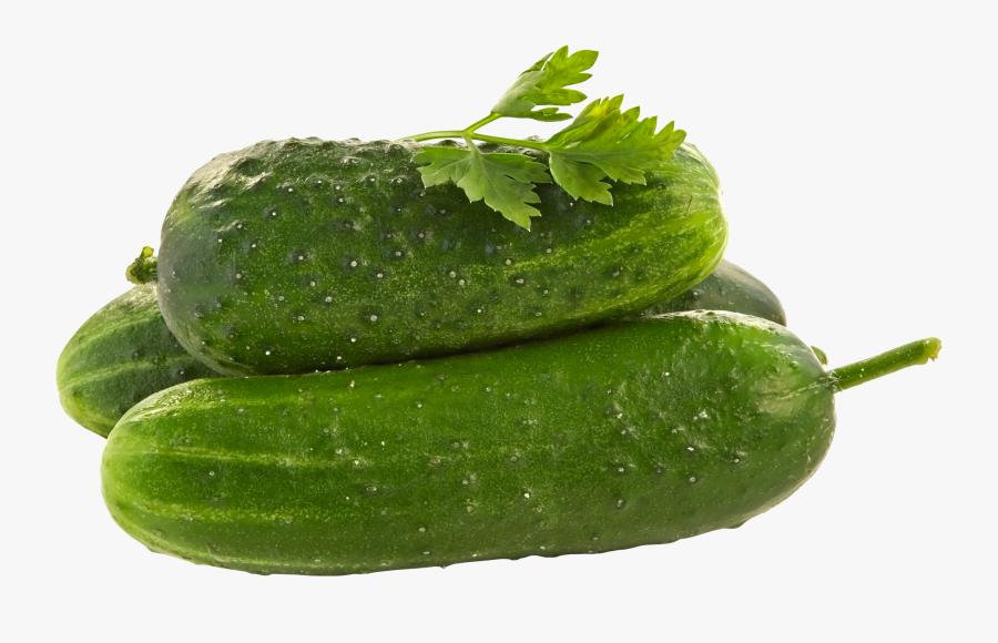 Cucumbers Png, Transparent Clipart
