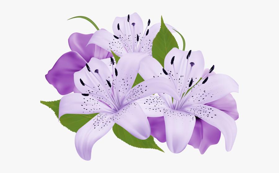 Lily Clipart Sea Flower - Purple Flower Clipart Png, Transparent Clipart