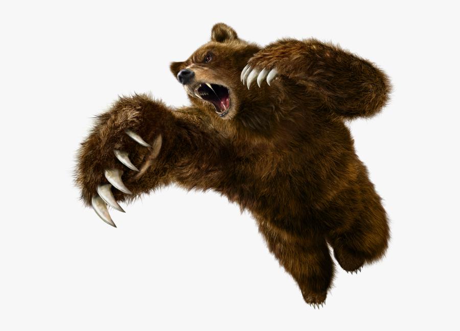 Grizzly Bear Png - Tekken 6 Kuma, Transparent Clipart