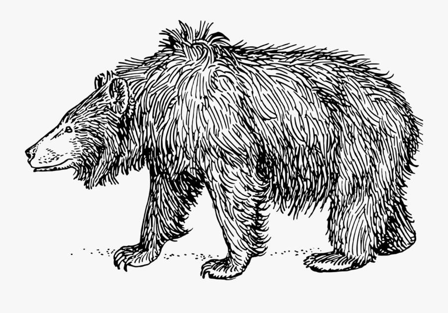 Sloth Bear - Sloth Bear Black And White, Transparent Clipart