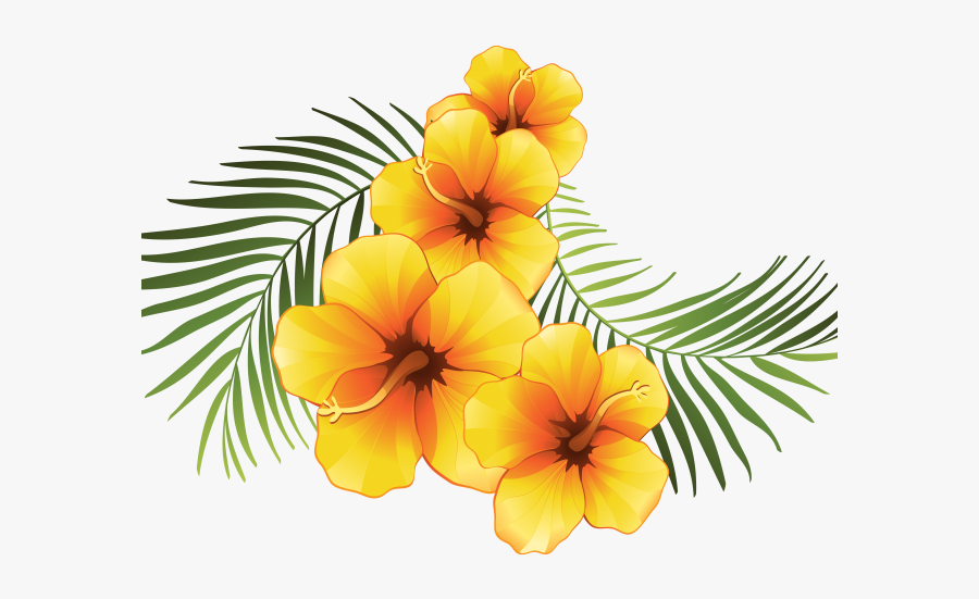 Exotic Clipart Moana - Tropical Flower Vector Png, Transparent Clipart