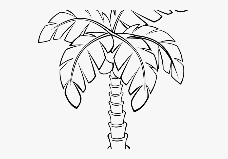 Cartoon Drawing Palm Tree, Transparent Clipart