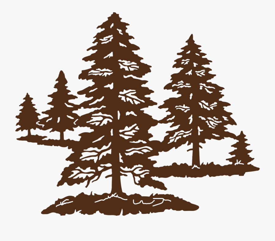 Pine, Transparent Clipart
