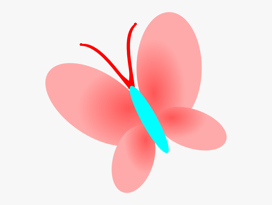 Insect, Transparent Clipart