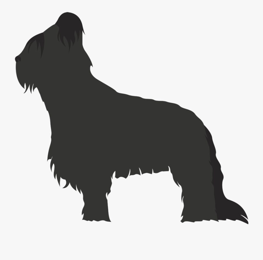 Scottish Terrier Non-sporting Group Briard Dog Breed - Dog Breed, Transparent Clipart