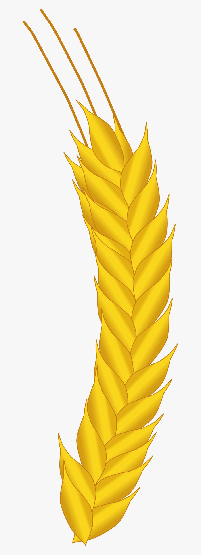 Ear Of Corn Clip Arts - Corn Ear Icon, Transparent Clipart