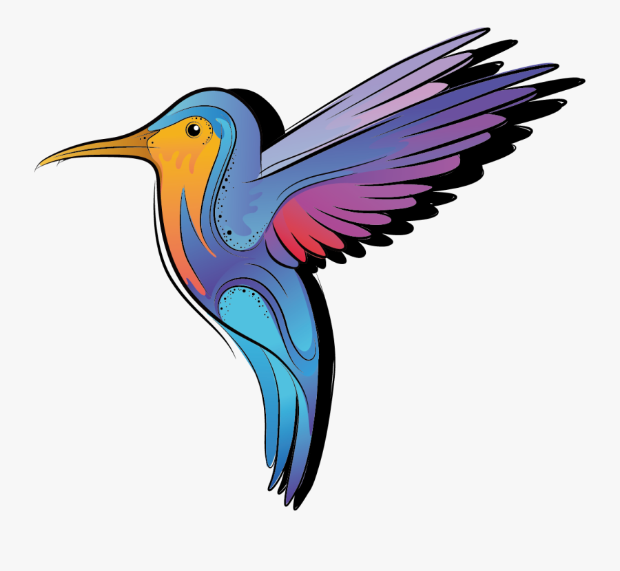 Drawing Colored Hummingbird - Bird Black And White To Color, Transparent Clipart