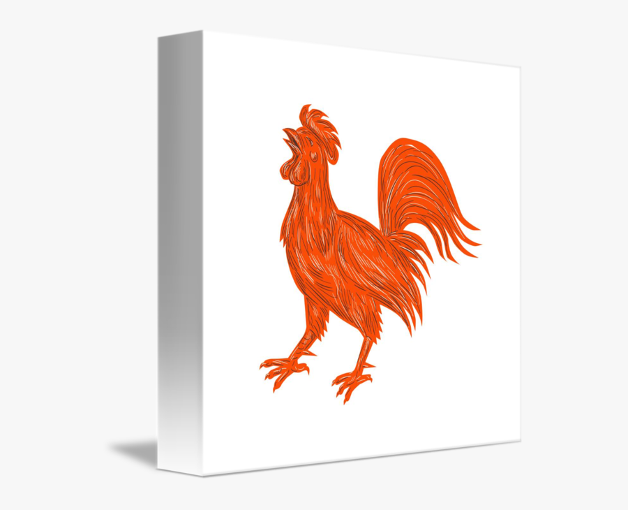 Transparent Chicken Face Clipart - Rooster, Transparent Clipart