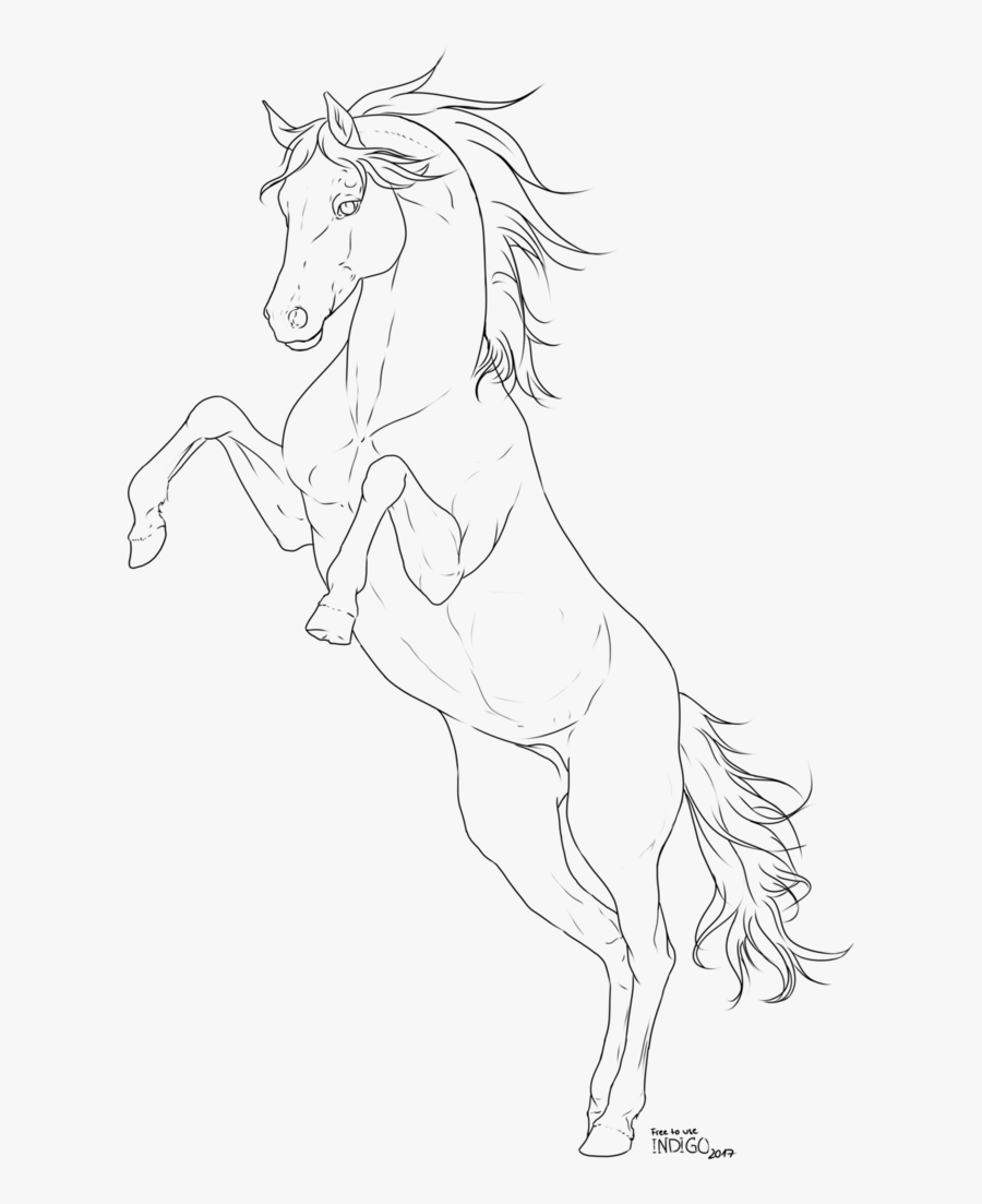 Vector Horses Watercolor Line Art Free Transparent Clipart Clipartkey
