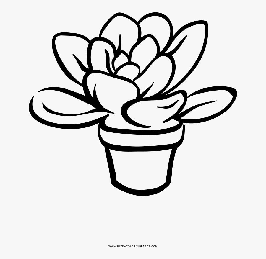 Succulent Coloring Page - Line Art, Transparent Clipart