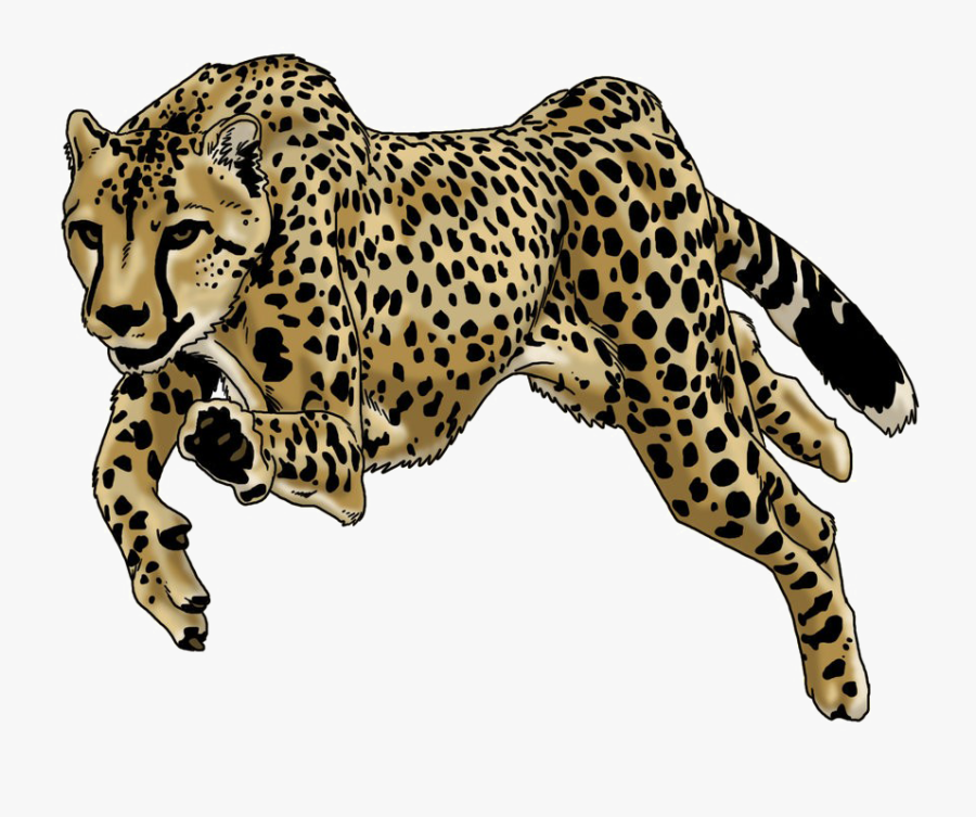 Running Leopard Png Image Background - Cheetah Running Png, Transparent Clipart