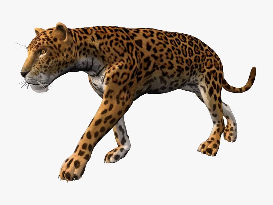 Transparent Leopard Png - Leopard Animation, Transparent Clipart
