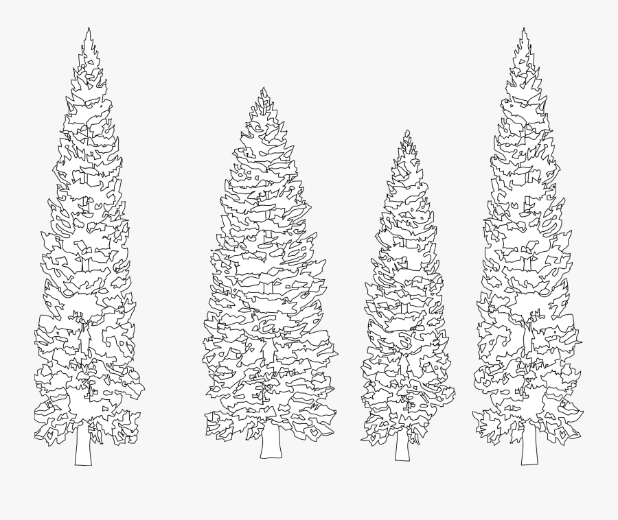 Pine Tree Clipart Coloring - White Tree Graphic On Black Background, Transparent Clipart