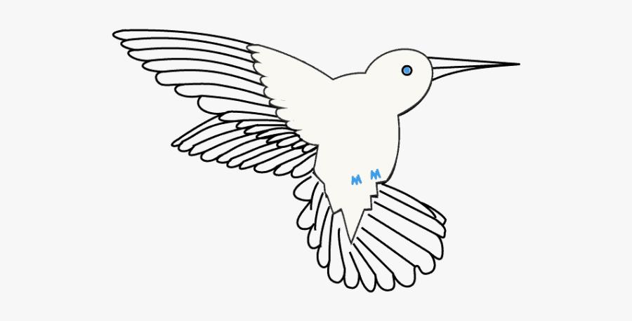 Hummingbird Beak Drawing, Transparent Clipart