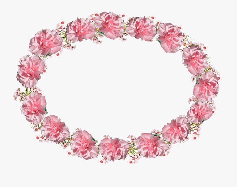 Transparent Red Carnation Png - Pink Flower Circle Frame Png, Transparent Clipart