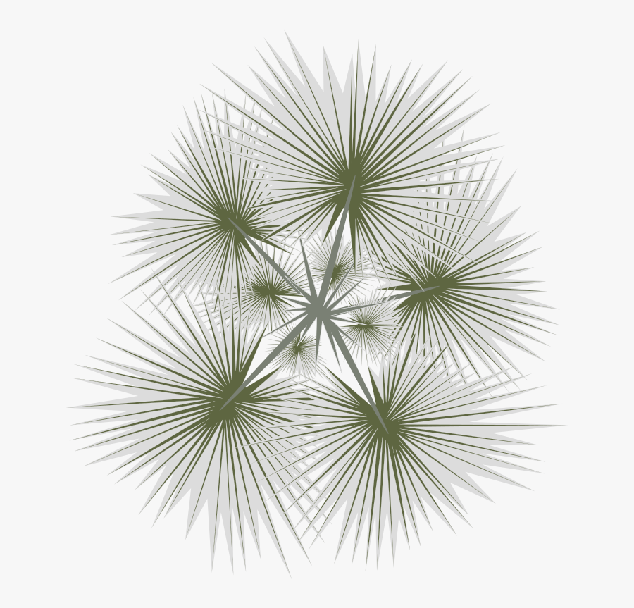 Transparent Tree Png Plan View - Top View Trees Png, Transparent Clipart
