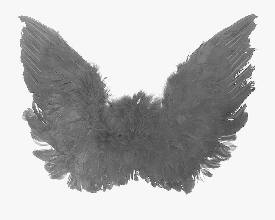 Transparent Angel Wing Png - Black Angel Wings Transparent, Transparent Clipart