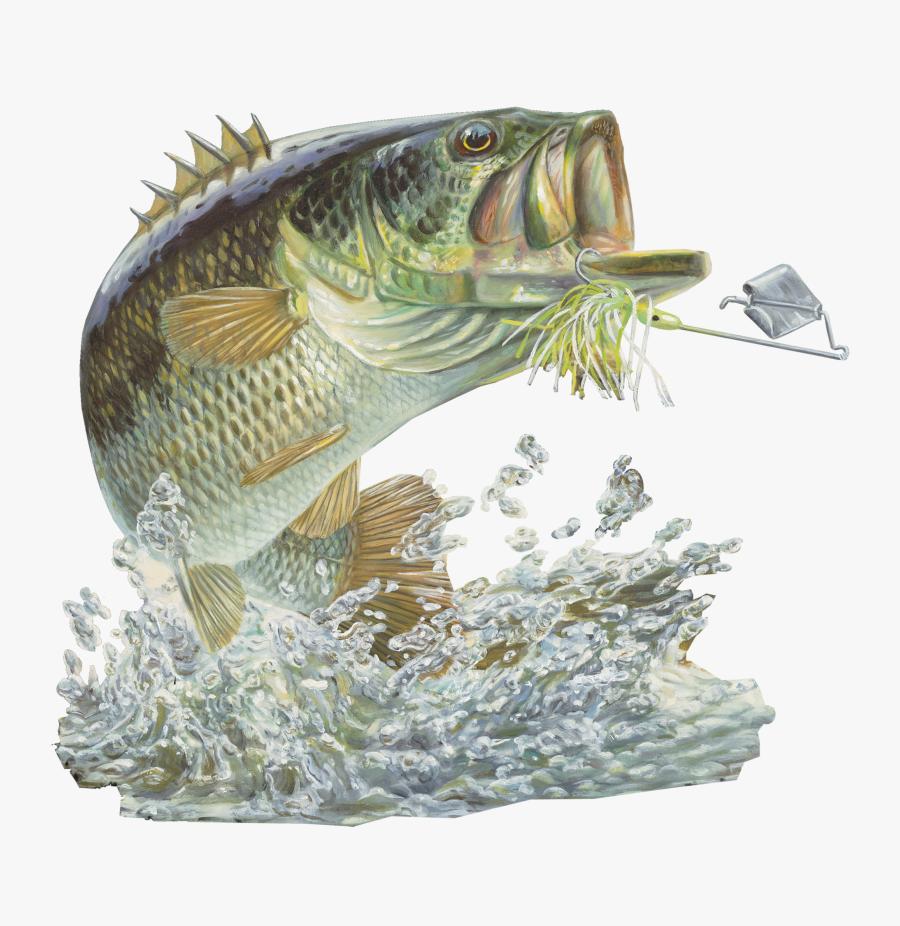Bass Fishing Sticker Buzzbait - Largemouth Bass Fish, Transparent Clipart