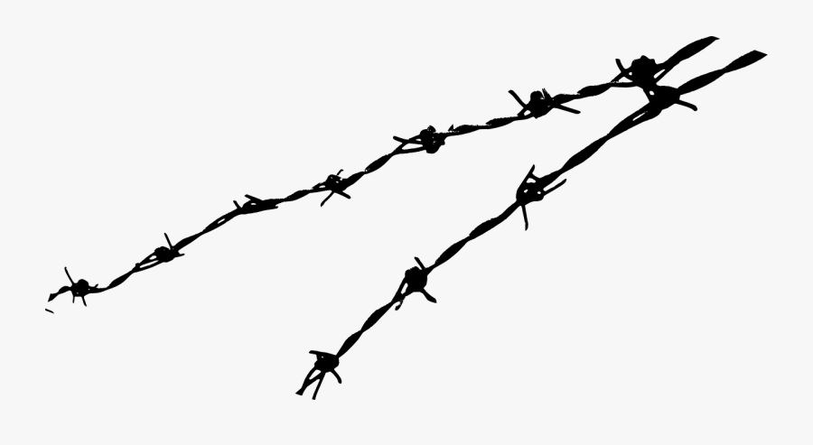 Barbed Wire Png, Transparent Clipart