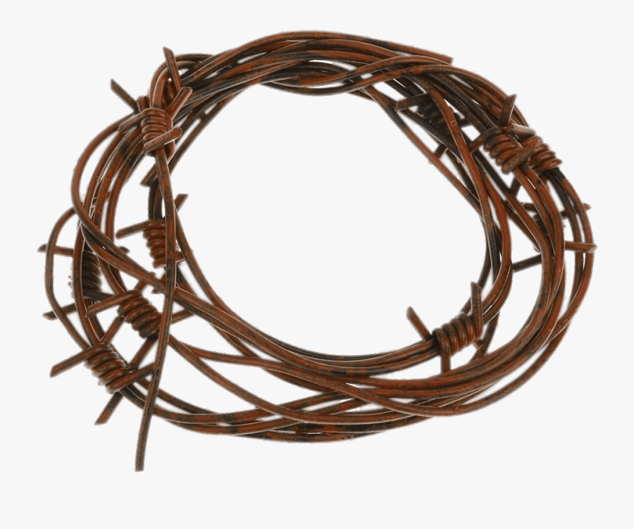 Barbed Wire Fake - Rusty Barb Wire, Transparent Clipart