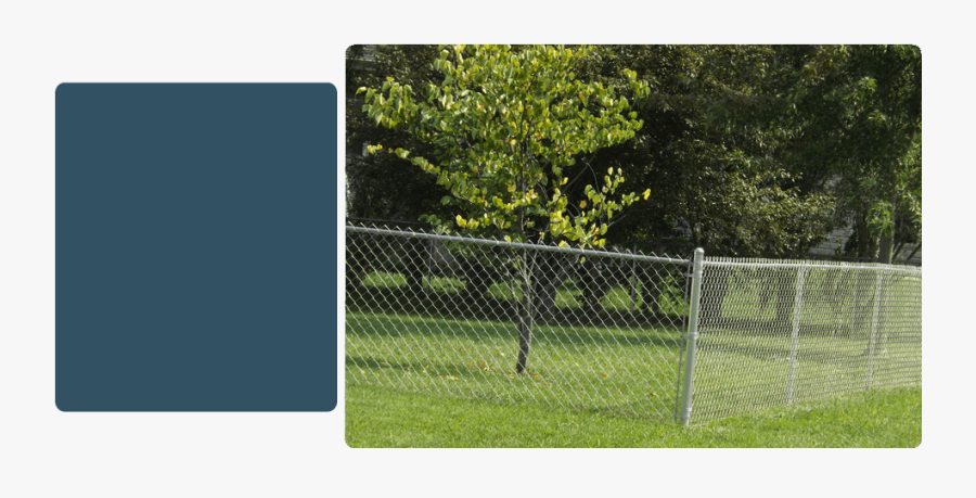 Barbed Wire, Transparent Clipart