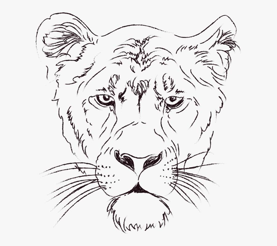 The Lioness, Lion, Animals, Figure, Zoo, Clip Art - Lioness Png, Transparent Clipart