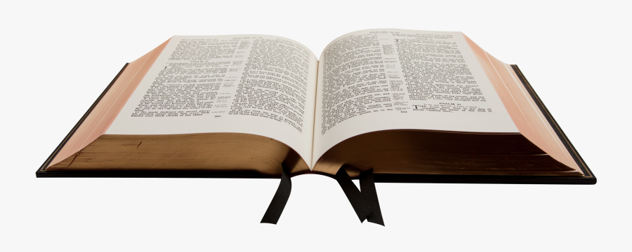 Bible Holy Text Study Translations Religious Trinity - Bible Png Transparent, Transparent Clipart