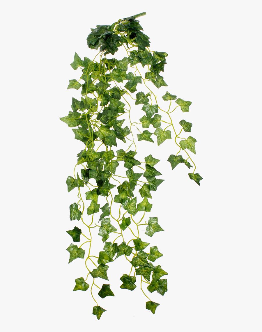 Vines Clipart Arch Aesthetic Vaporwave Plants Png Free Transparent Clipart Clipartkey
