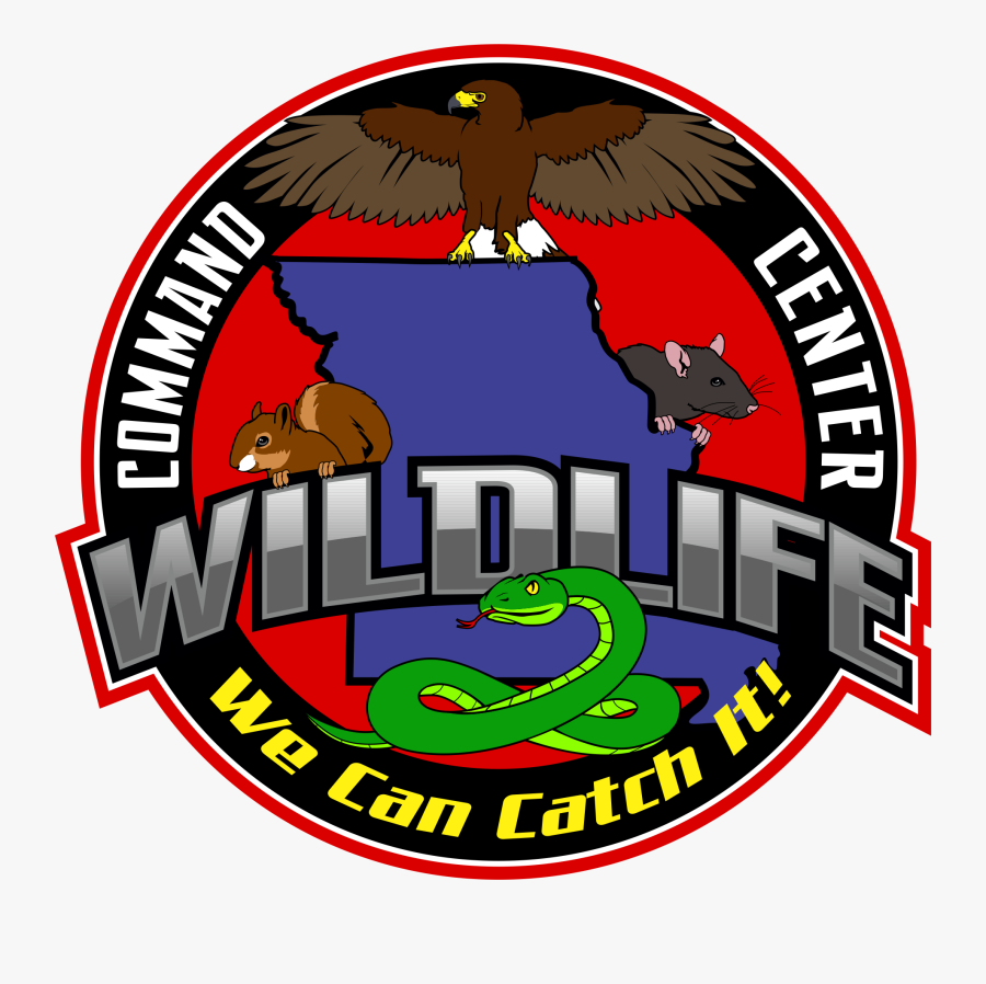 Stories And Wildlife Tales - Wildlife Command Center - Kansas City, Transparent Clipart
