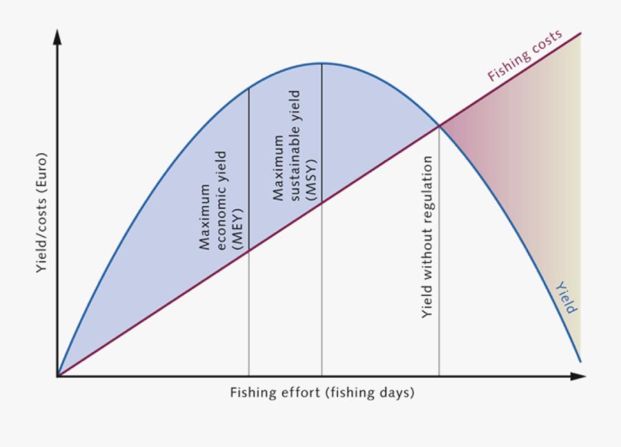 Clip Art Flat Line Fishing - Triangle, Transparent Clipart