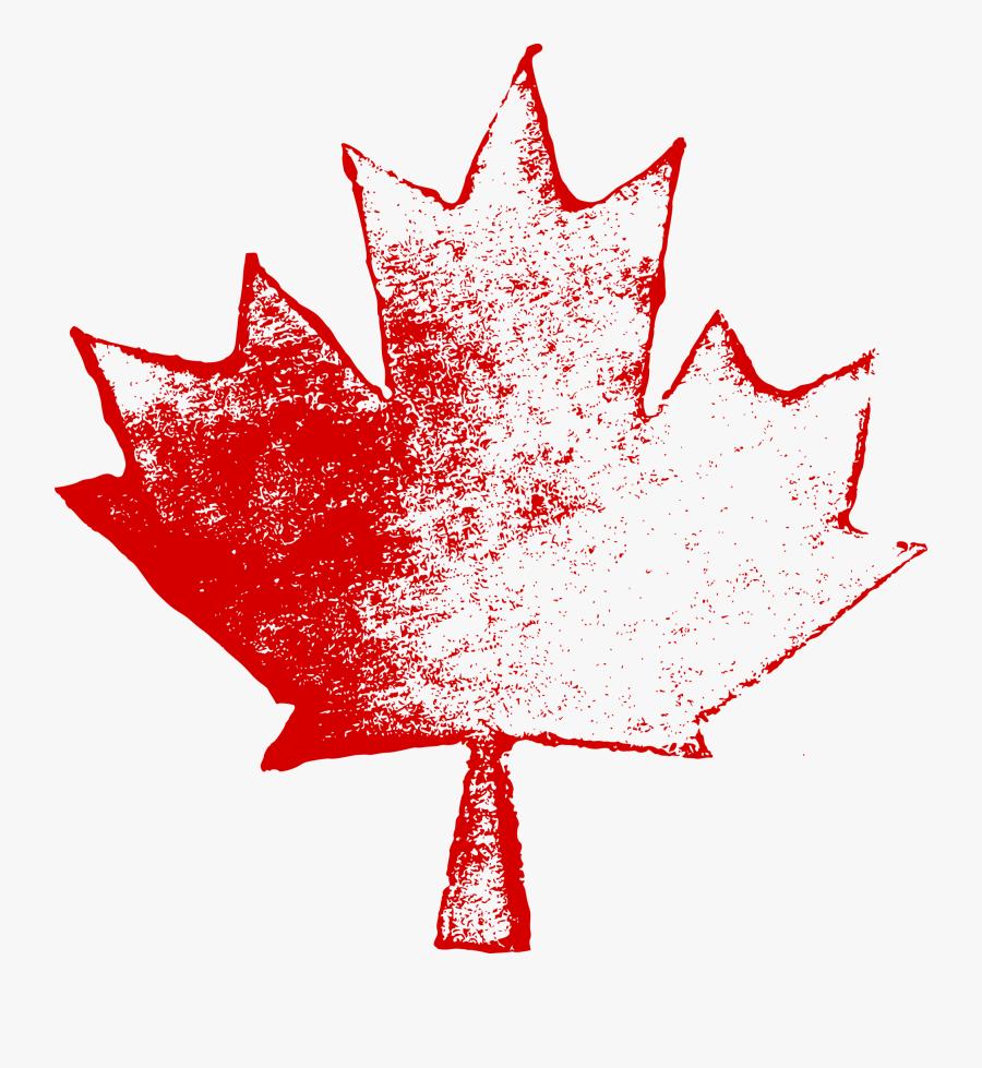 Maple Leaf Png Image - Canada Maple Leaf Png, Transparent Clipart
