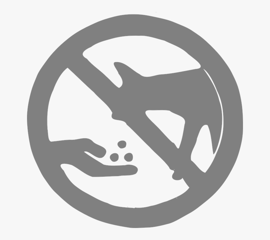 No Feeding, Coyotes, Wild Animal, Feeding, Forbidden - Choices You Can Make To Lower Risk, Transparent Clipart