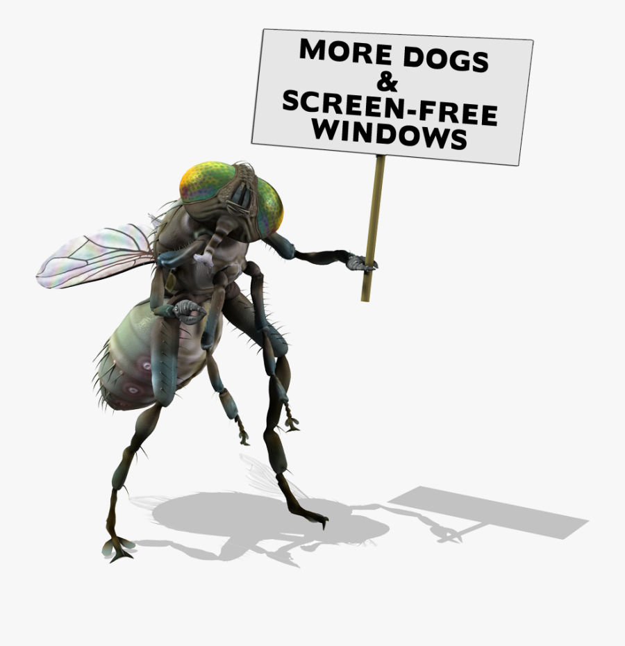 Fly Sign - De Uma Mosca Gigante, Transparent Clipart