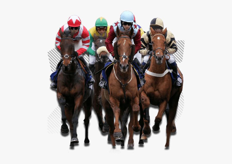 Fairview Horse Racing Port Elizabeth, Transparent Clipart
