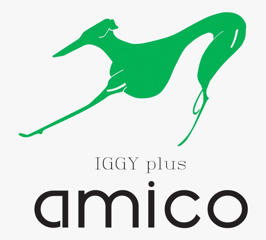 Transparent Greyhound Running Clipart - Rampur Greyhound, Transparent Clipart