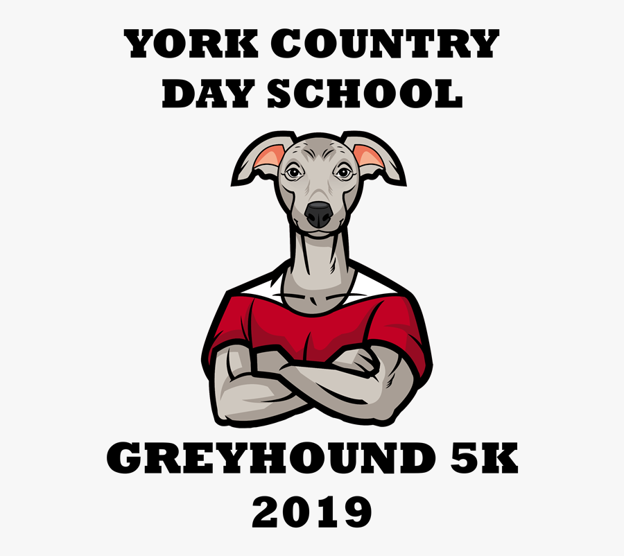 Greyhounds York Country Day School, Transparent Clipart