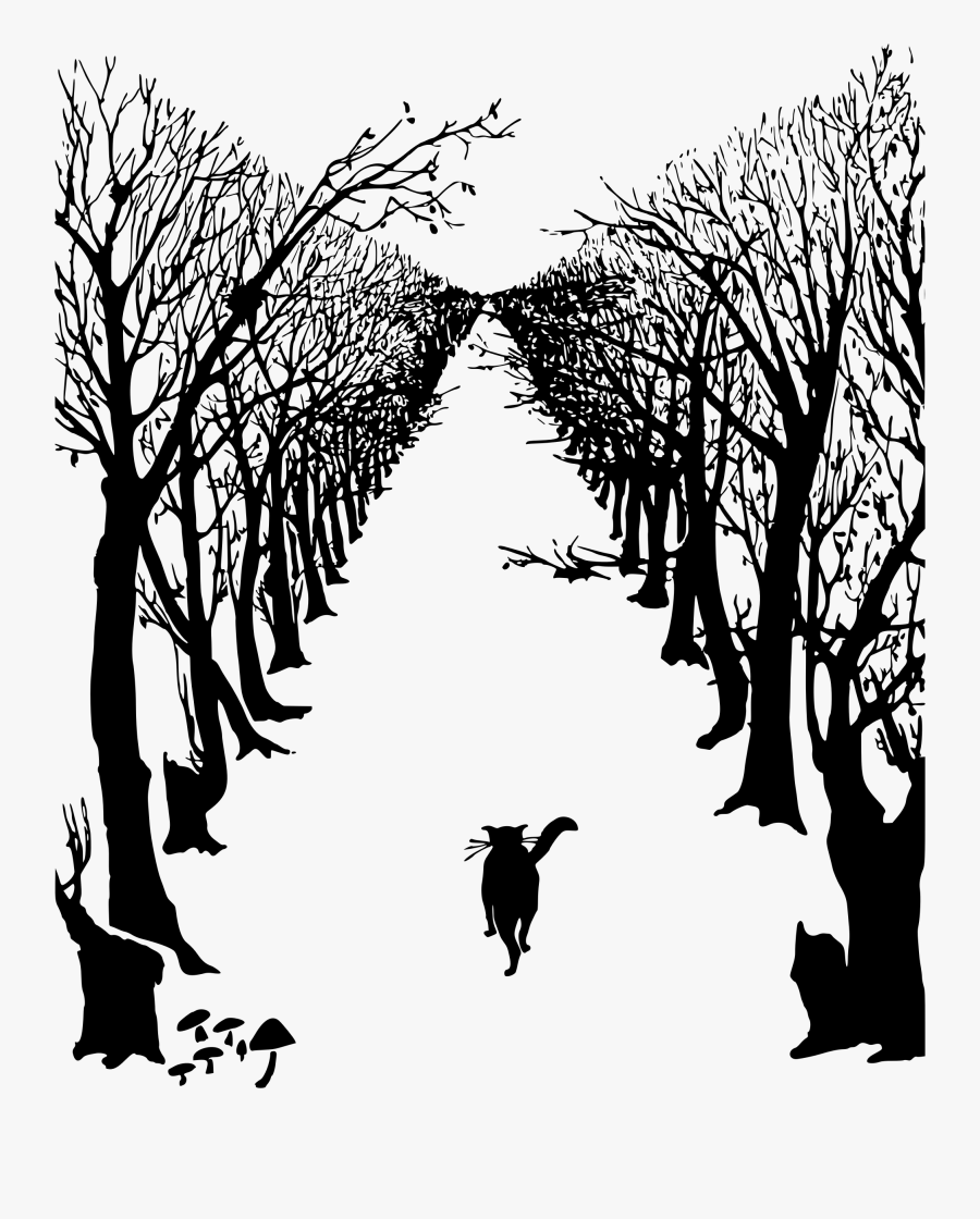 And Avenue Of Trees - Rudyard Kipling Illustrations Just So Stories, Transparent Clipart