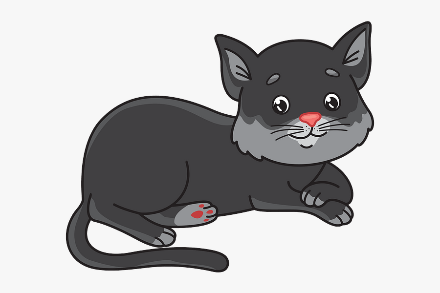 Domestic Short-haired Cat, Transparent Clipart