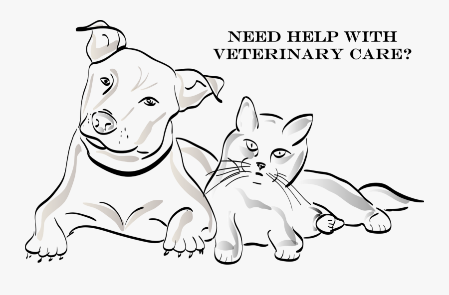 Help With Veterinary Costs - Dog And Cat Sketch, Transparent Clipart