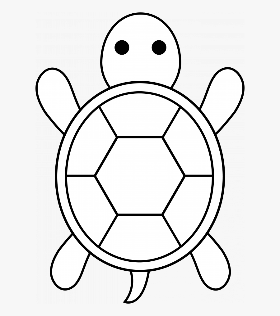 Simple Turtle Shell Pattern Free Transparent Clipart Clipartkey,Pet Tortoise Breeds