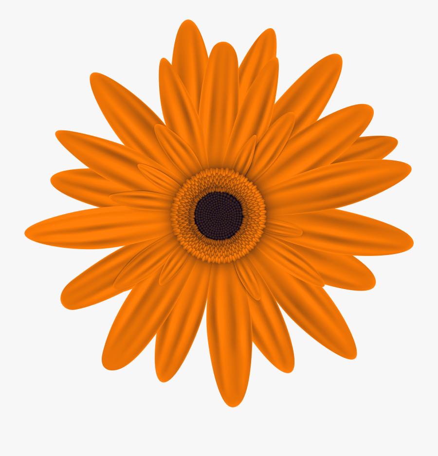 Flower Clipart, Orange Flowers, Clip Art, Flower Illustrations, - Transparent Pink Flower Clipart, Transparent Clipart