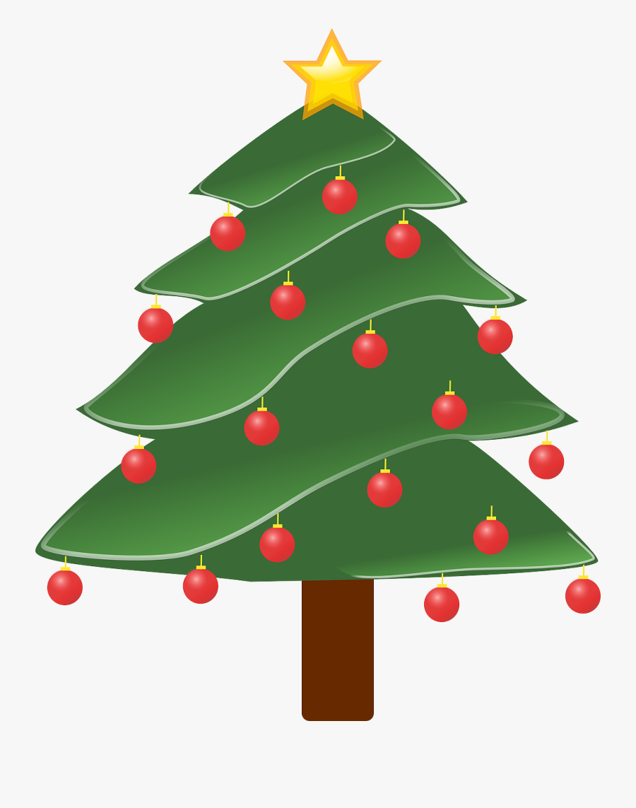 Christmas Trees Where Did They Come, Transparent Clipart