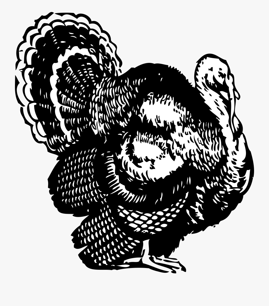 Thanksgiving Turkey Clipart Png - Turkey Clipart Black And White, Transparent Clipart