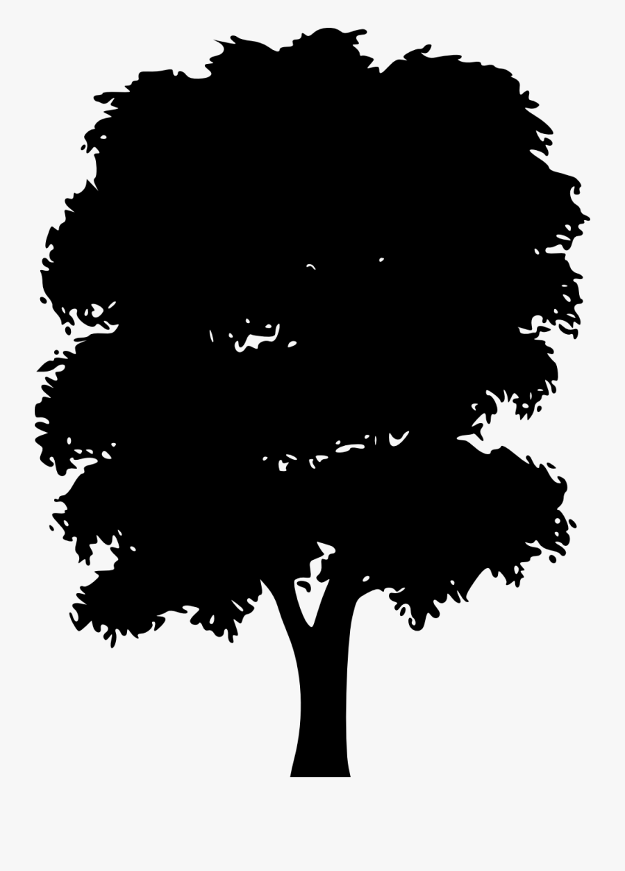 Oak Tree Silhouette Cartoon Tree Silhouette Png Free Transparent Clipart Clipartkey Check our collection of pine tree outline clipart, search and use these free images for powerpoint presentation, reports, websites, pdf, graphic design or any other project you are working on now. oak tree silhouette cartoon tree