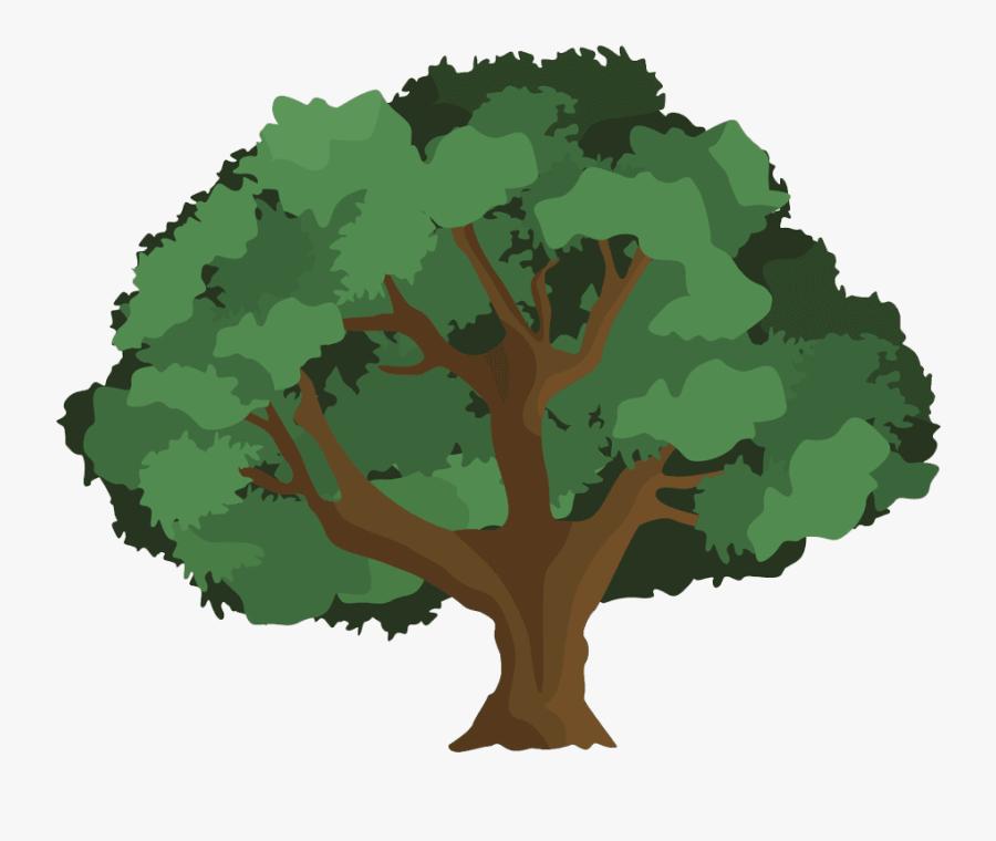 Transparent Free Clipart Oak Leaf - Oak Tree Clipart Png, Transparent Clipart